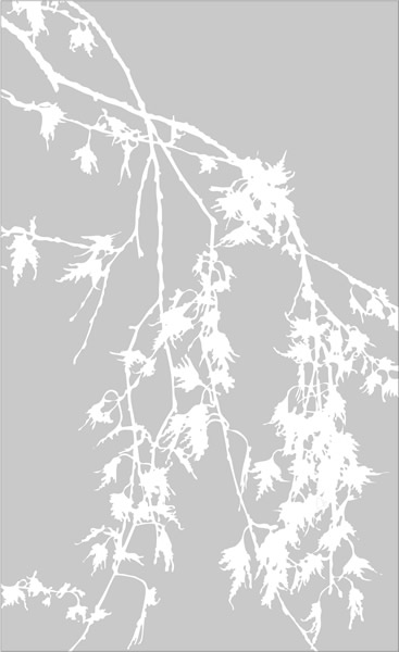 etched-glass-drooping-tree-branches