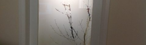 Etched Glass Tree Branches Design Door